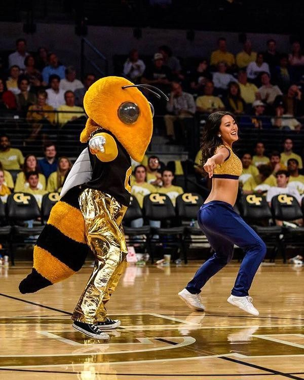 Share Your Spirit as Buzz Goldrush Dancer   Campus and Community  Share Your Spirit as Buzz Goldrush Dancer  By Kristen Bailey | March 8 2018  Atlanta GA  Click image to enlarge  If you love attending Georgia Tech events and have spirit to share consider becoming Buzz or joining the Goldrush Dance Team.  Buzz has been a fixture both at sporting events and throughout the community since the 1980s. Buzz is a member of the cheerleading squad and attends all football games all home mens and…