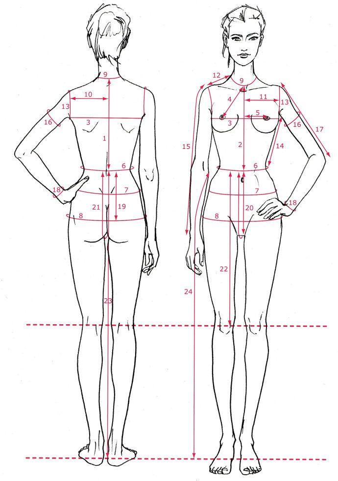Le Buste De Base Illustration De Mode Dessin De Mode