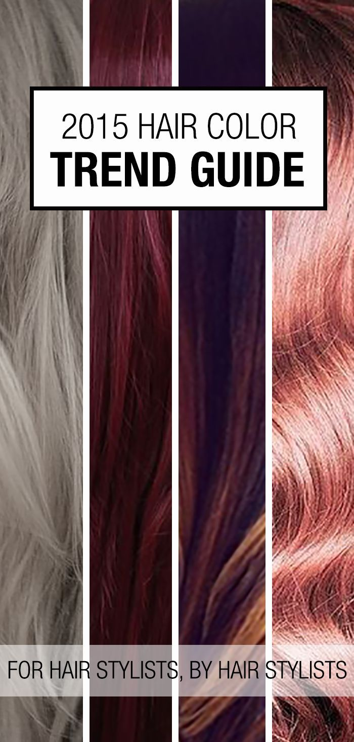 2015 Hair Color Trends Guide! Here are some great hair color ideas to bring to the salon. There's a hair trend for everyone this year: silver hair, pastels, burgundy hair color, etc.!