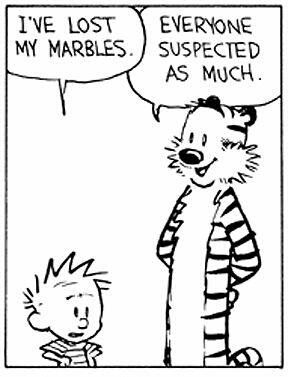 Ive Lost My Marbles Memes Calvin Hobbes Comics