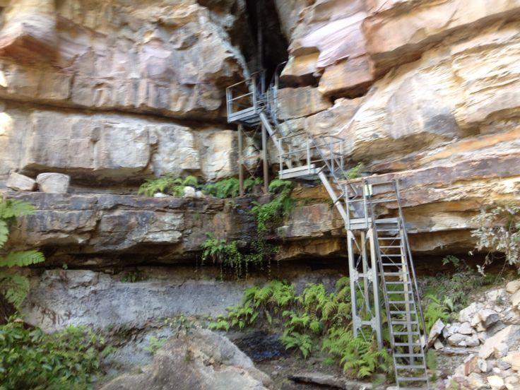 Entrance to Ampitheartre Canarvon Gorge