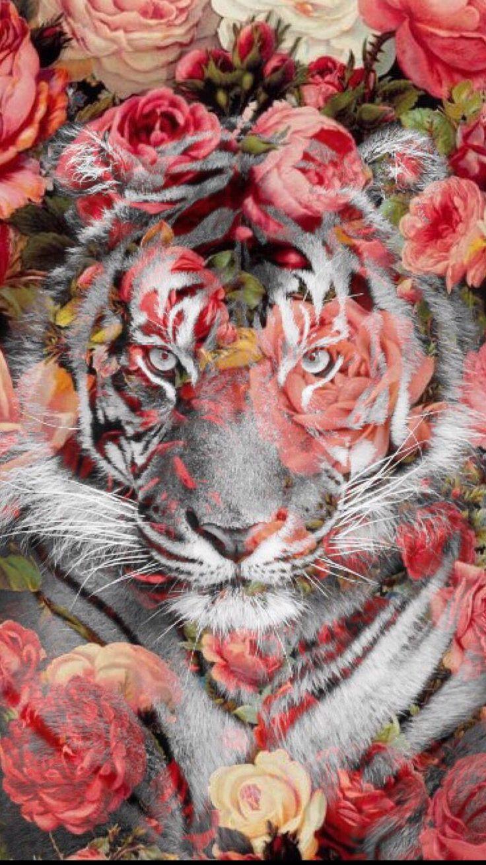картинки тигры с розами конкурса