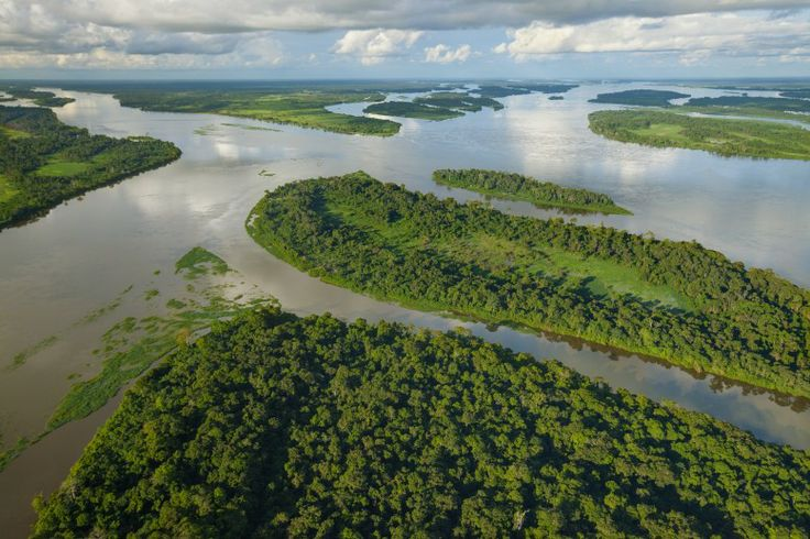 01 August 2011 The Congo River, up to eight kilometers wide in some parts, forms the biogeographic divide between bonobos and chimpanzees.