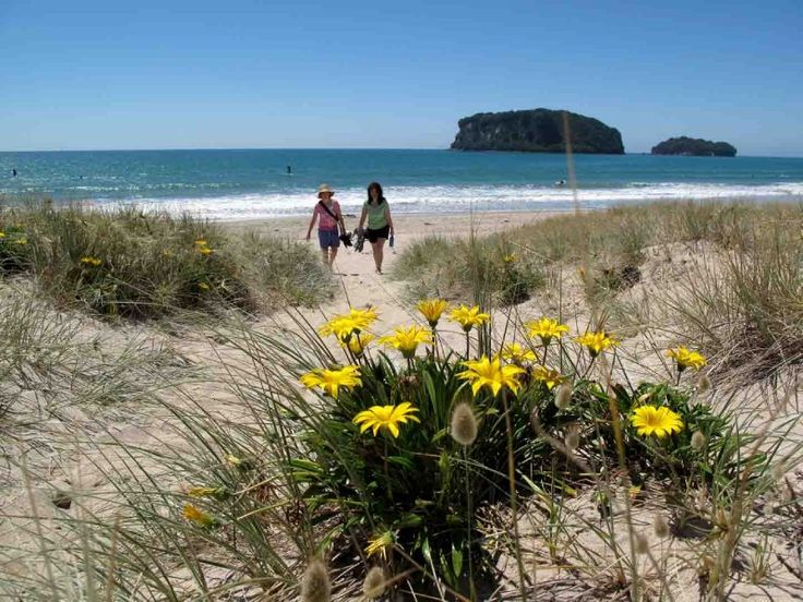 Whangamata New Zealand  city pictures gallery : Whangamata, New Zealand | Favorite Places & Spaces | Pinterest