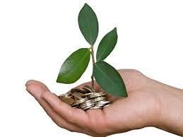 El capital semilla, conocido en ocasiones como financiación semilla, es un tipo de oferta de acciones en la cual un inversor adquiere una parte de un negocio o empresa. El término semilla sugiere que se trata de una inversión temprana