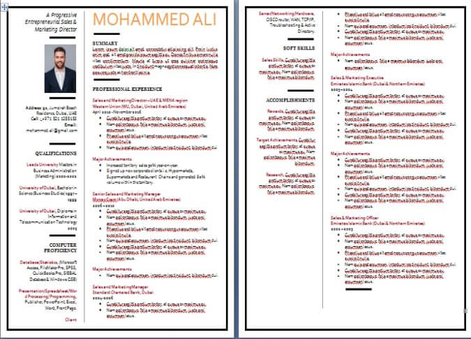 Cv Writing Sample And Templates From Dubai Forever Com Resume Writing Examples Cv Format Sales Resume