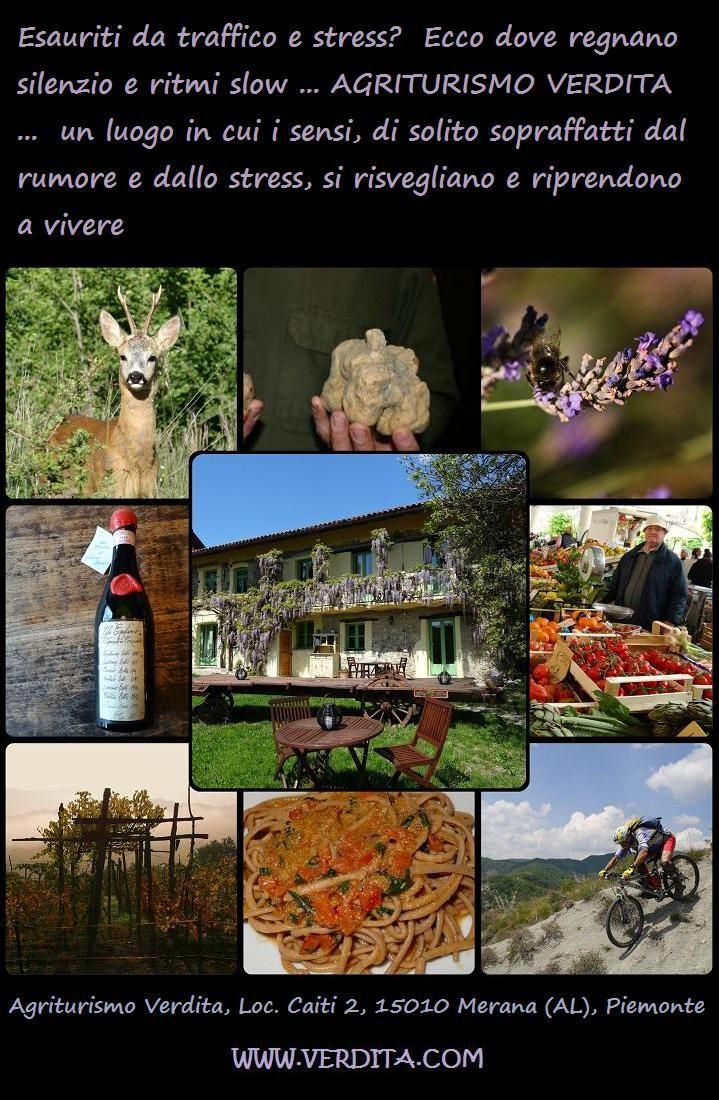 Agriturismo Verdita, dove regnano silenzio e ritmi slow ... www.verdita.com #appartamenti #vacanza