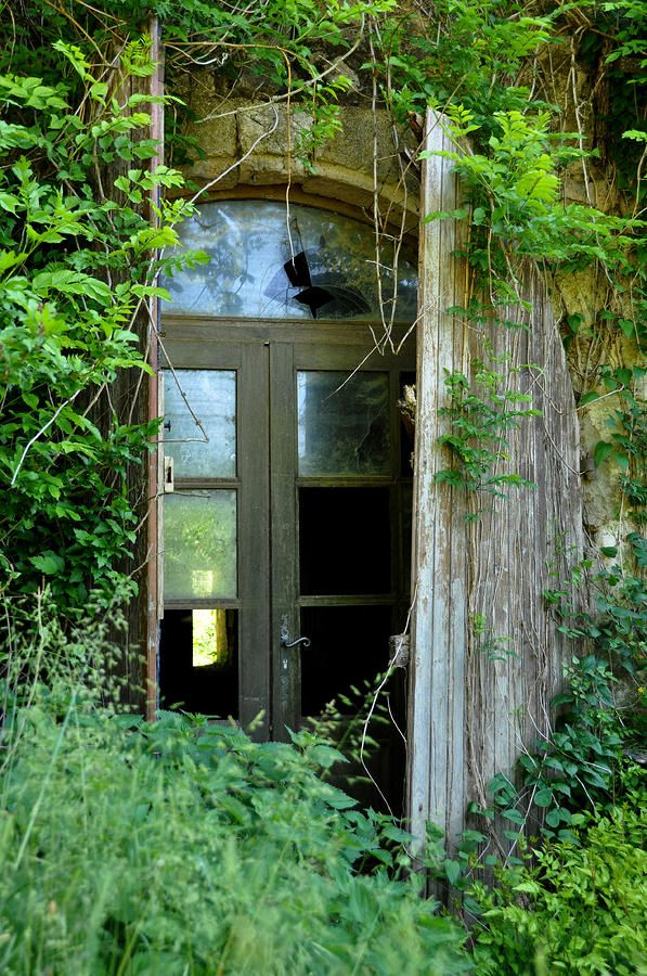 Abandoned House in France Photograph - Abandoned House in France Fine Art Print