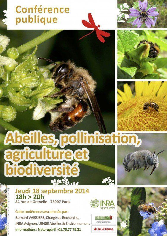 Conférence publique « Abeilles, pollinisation, agriculture et biodiversité » Natureparif http://www.pariscotejardin.fr/2014/09/conference-publique-abeilles-pollinisation-agriculture-et-biodiversite/