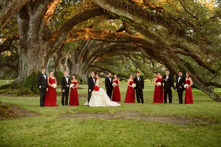 Red, White, & Gold Oak Alley Plantation Wedding|Photographer: Eye Wander Photo