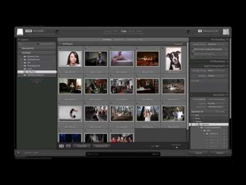 Tutorial: Lightroom Importing and Beginners Guide - YouTube