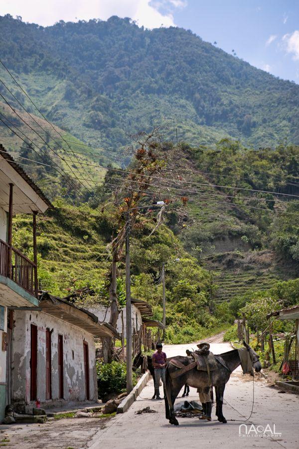 Tocha, Tolima. Colombia. En ruta para subir al volcán Machin