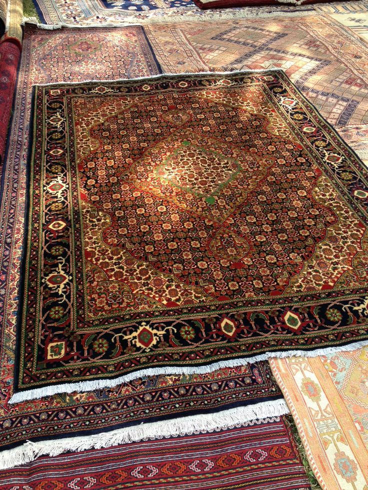 17 Best Images About Carpets N Rugs On Pinterest Carpets