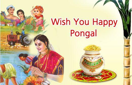 Happy Pongal In India telangana and andra pradesh telugu people celebrating very grandly check out this post Happy Pongal, Pongal Images, Pongal Images 2017, Pongal Pics, Pongal Pictures, Sankranthi Images, Sankranthi Photos,