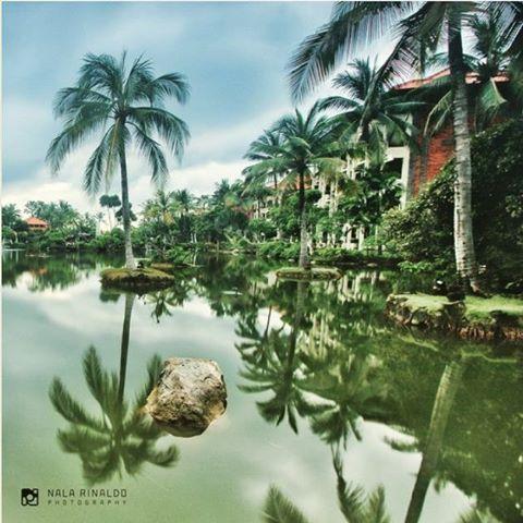 WEBSTA @ ayodyabali - Serene beauty of our resort's green lagoon. 📷 : @nala_rinaldo #ayodyabali #nature #lagoonview #nusadua