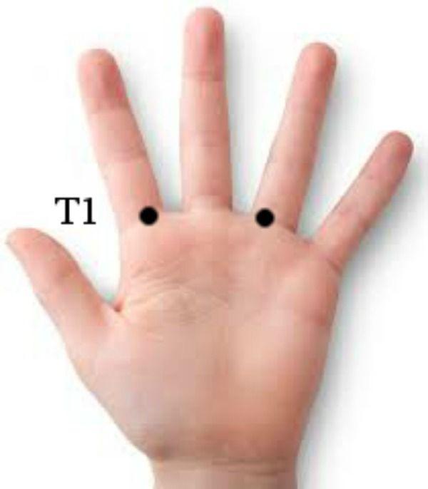 A 14 meridián minden egyes pontja megtalálható a kézen - Késmárki László