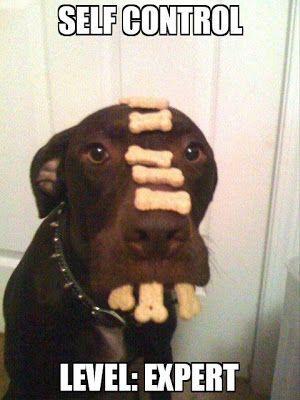 Dog Humor : Total Self Control