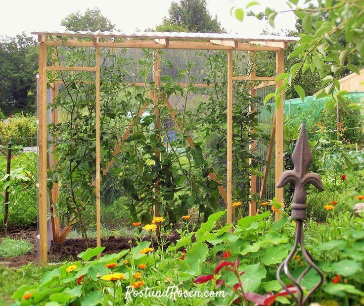 Garten-DIY: Wie man ein schönes Tomatenhaus baut. #diytomatenhaus #tomatenhaus #anleitung