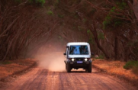Touring backroads, Exceptional Kangaroo Island Tours  South Australia http://www.tripadvisor.com.au/ShowForum-g255092-i697-South_Australia.html