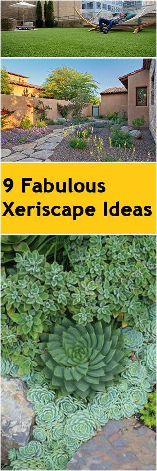 9 Fabulous Xeriscape Ideas                                                                                                                                                                                 More