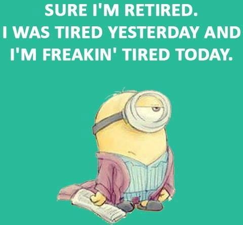 Retired Minion