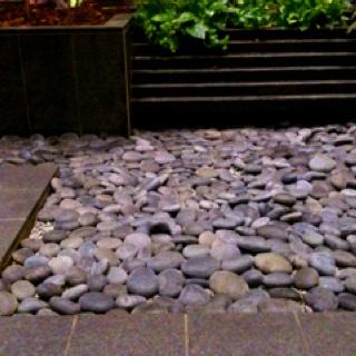 Remarkable Indoor Zen Garden