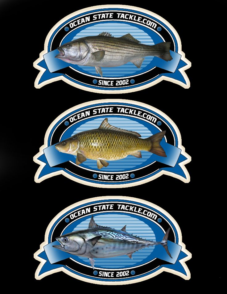 Striped Bass, Carp and Inshore Fishing Rods, Reels and Tackle  Dealers for Okuma, Shimano, Penn and Daiwa Reels  Ocean State Tackle Providence RI 02904  RI's Best Bait and Tackle Shop