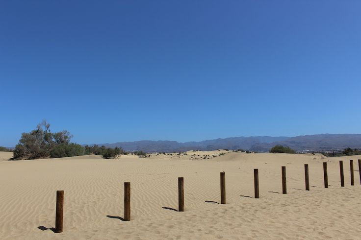 Sand dunes in a nature reserve in Gran Canaria.