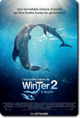 http://quicksearchmovies.com/fr/view/?q=6749&L%27Incroyable%20Histoire%20de%20Winter%20le%20dauphin%202%20_R6%20MD_2014