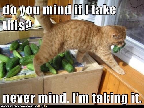 Please don't mind , I'm taking it!