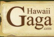 Hawaii beaches,hotels,beaches