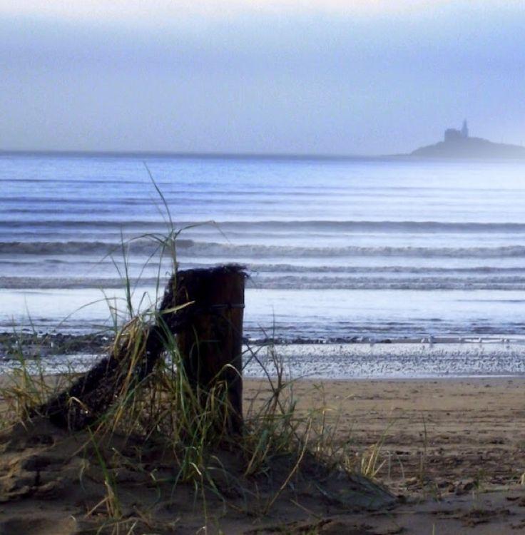 Brynmill, Bryn, Wales - Photo from Swansea beach towards mumbles point.