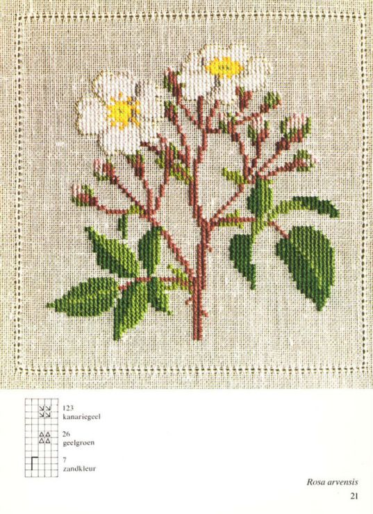 Gallery.ru / Фото #6 - Cross Stitch Pattern in Color - Mosca