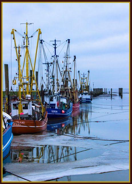 Gabriele Manhold Photography: Der Kutterhafen von Dorum - Neufeld