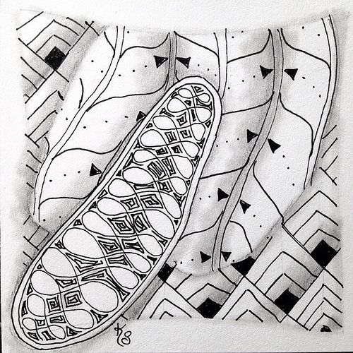 """#zentangle 2015-026, stepping out of my comfort zone and going larger scale with """"One Zentangle A Day"""" day 10 patterns, Echoism, Finery and Fluke. Not loving it :-( 