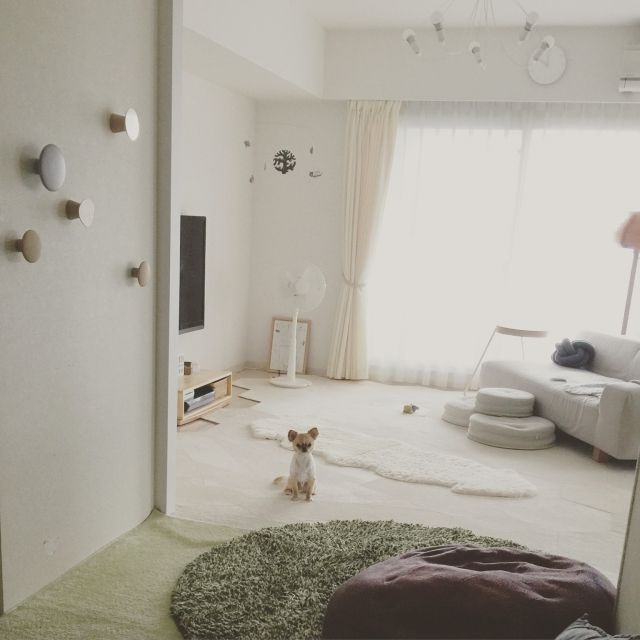 haruhinaさんの、部屋全体,照明,ペット,犬,モビール,ソファ,ビーズクッション,クッション,ラグ,北欧,マンション,ウォールデコ,北欧インテリア,マンションインテリア,タイルカーペット,ヤコブソンランプ,鹿児島睦,MUUTO,ペットと暮らすインテリア,いつもいる場所,のお部屋写真