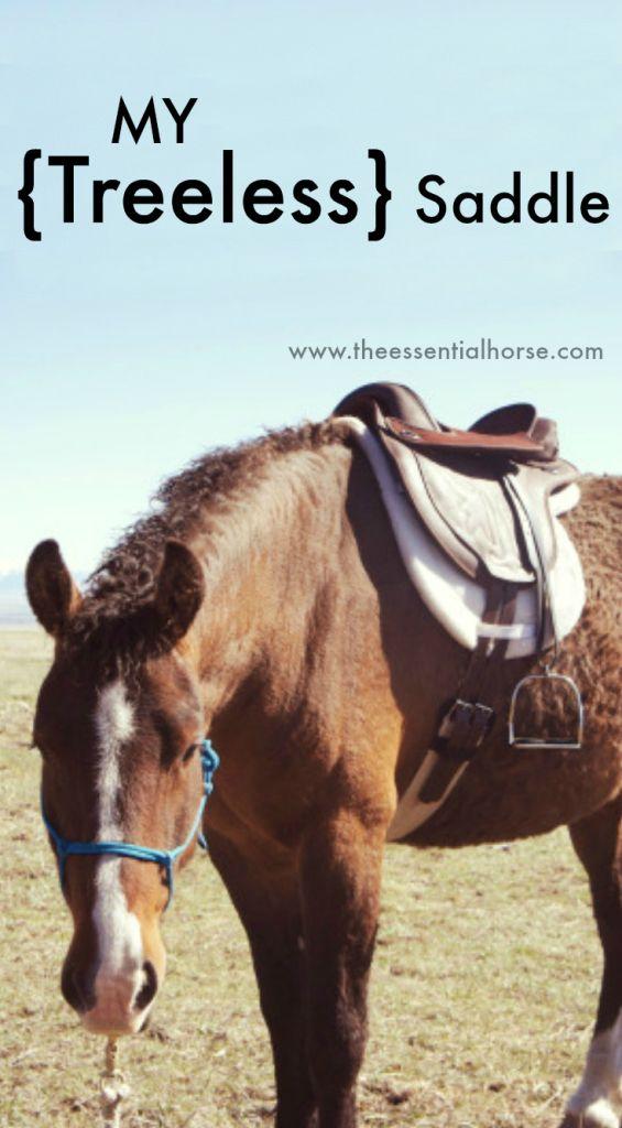 My Treeless Saddle