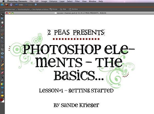 Digital Tutorials : Photoshop Elements - The Basics (Lesson#1) - Designer Garden - Two Peas in a Bucket