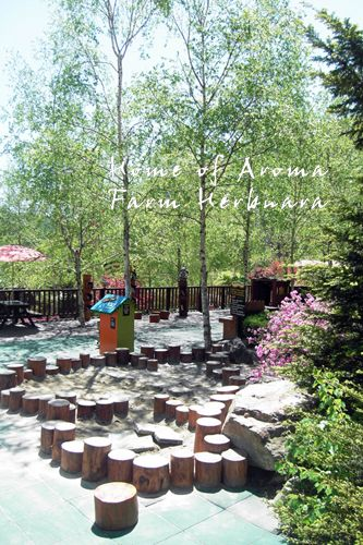 Nature Play Garden, Farm Herbnara, Korea