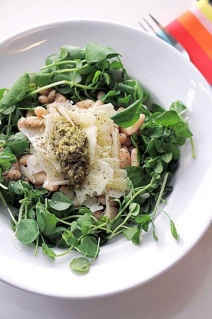 — Pecorino cheese, green pesto and cannellini beans salad