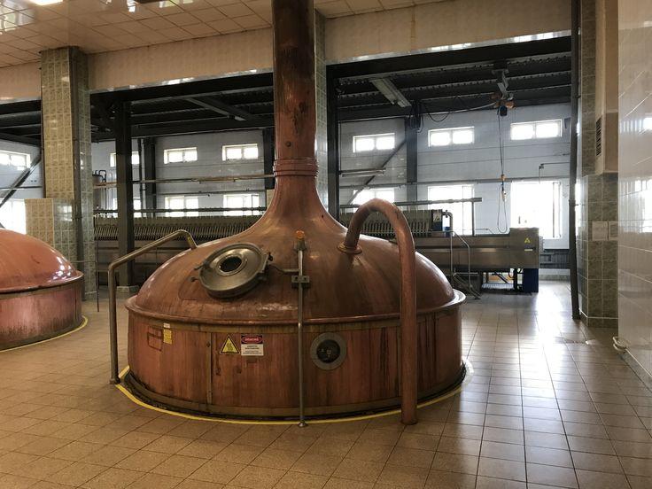 Depósito en el que la empresa cervecera AB InBev procesa la mejor malta del mundo. (Foto: Carolina Grillo)