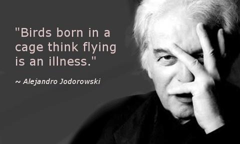 """Birds born in a cage think flying is an illness."" - Alejandro Jodorowski"