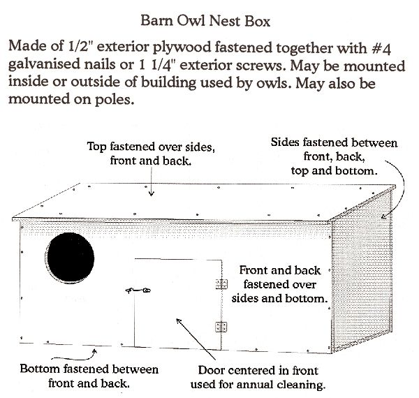 21 best images about owl boxes on Pinterest | Owl box ...