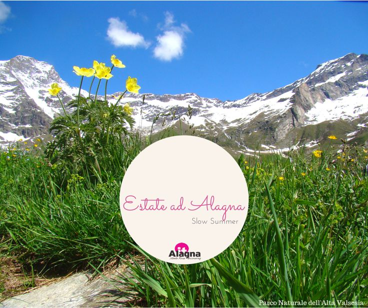 Parco dell'Alta Valsesia, la destinazione perfetta per lunghe passeggiate da soli o in compagnia.  #Montagna #Vacanze #Natura #Viaggi #Alagna #Valsesia #Piemonte #Outdoor #Trekking