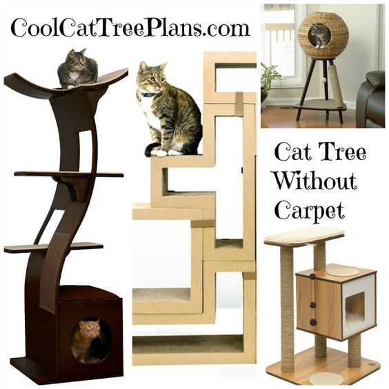 Best Cat Tree Without Carpet Ideas
