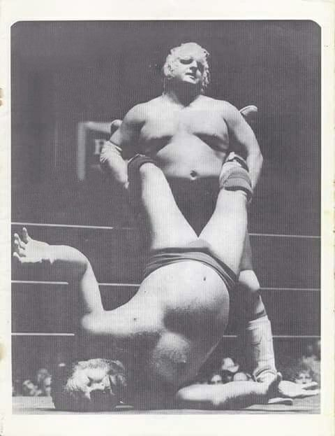 Harley Race and Dusty Rhodes
