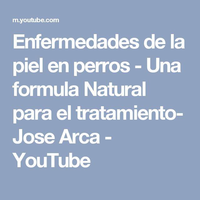 Enfermedades de la piel en perros - Una formula Natural para el tratamiento- Jose Arca - YouTube