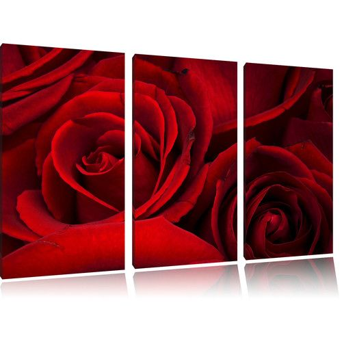 Found it at Wayfair.co.uk - Red Roses 3-Piece Photographic Print Set on Canvas