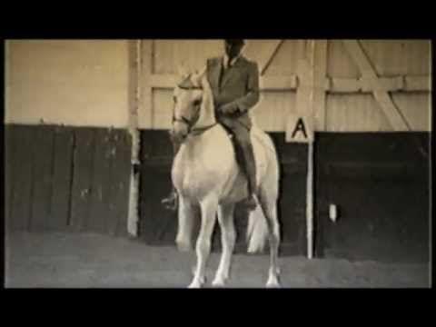 """Leçon du dressage pour le Grand Maître Nuno Oliveira à un cheval lipizzane pour lui enseigner à marcher droit. """" Le dressage d´un cheval requiert une certaine dose de réflexion de la part du cavalier, réflexion suivie de l´observation rigoureuse de l´etat physique et mental du cheval afin de déterminer d´où provienent certaines résistances, les resistances sont vaincues non par une opposition de la part du cavalier mais par une gymnatique appropriée """".  Paroles du Maître NUNO OLIVEIRA"""