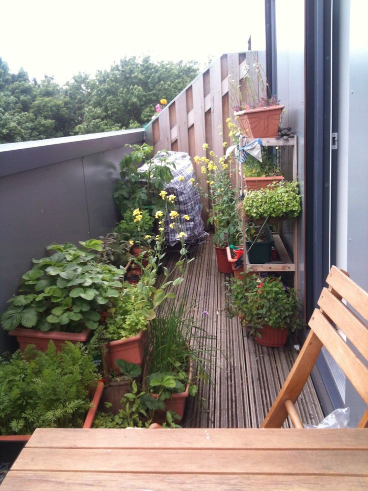 108 best urban & rooftop gardening images on pinterest | gardening ... - Small Patio Vegetable Garden Ideas